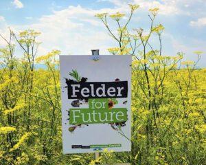 Felder for Future_c